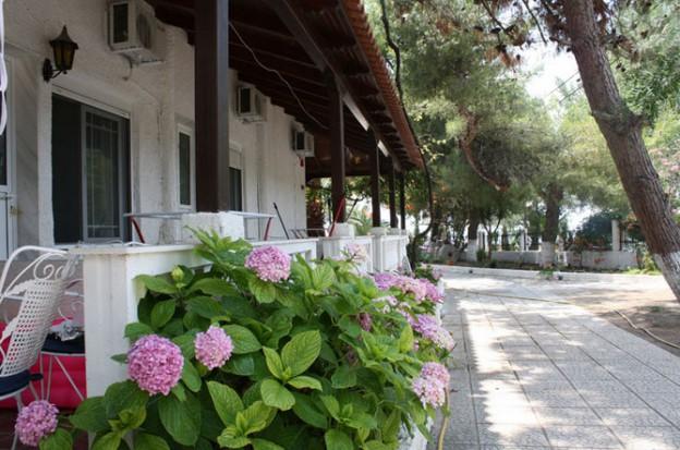 Vila Olga Toroni Galileo tours