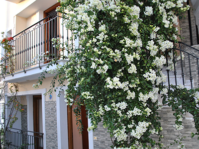 Galileo Tours Vila Spiridula Skiatos